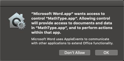 Click OK to authorize Word to launch MathType.